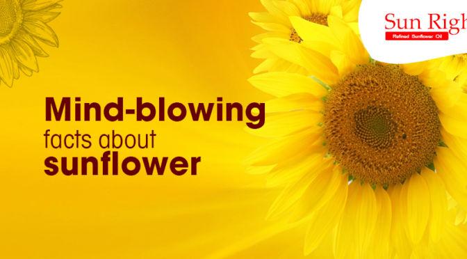 best sunflower oil manufacturers in chennai